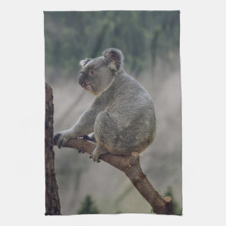 Cute koala bear on a eucalyptus tree tea towel