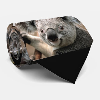 Cute Koala Bear Photo Tie (black background)