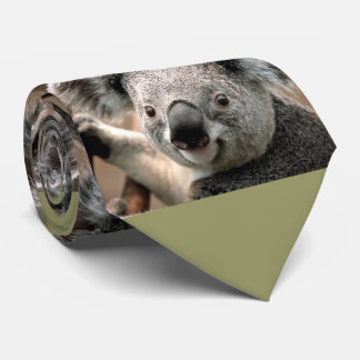 Cute Koala Bear Photo Tie (green background)