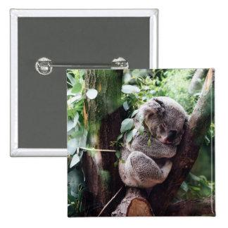 Cute Koala Bear relaxing in a Tree 15 Cm Square Badge