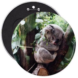 Cute Koala Bear relaxing in a Tree 6 Cm Round Badge