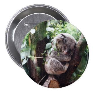 Cute Koala Bear relaxing in a Tree 7.5 Cm Round Badge
