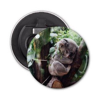 Cute Koala Bear relaxing in a Tree Bottle Opener