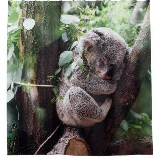Cute Koala Bear relaxing in a Tree Shower Curtain