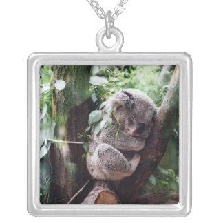 Cute Koala Bear relaxing in a Tree Silver Plated Necklace