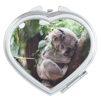 Cute Koala Bear relaxing in a Tree Vanity Mirrors