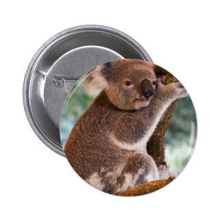 Cute Koala Button