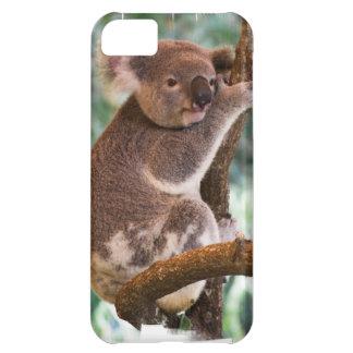 Cute Koala Cover For iPhone 5C