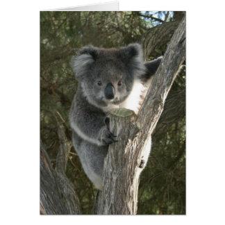 Cute Koala Climbing a Tree Card