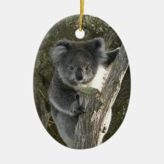 Cute Koala Climbing a Tree Ceramic Ornament