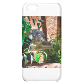 Cute Koala iPhone 5C Cover