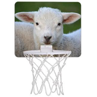 Cute lamb portrait mini basketball hoop