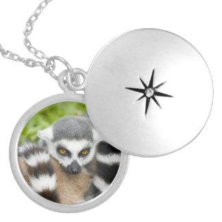 Cute Lemur Stripey Round Locket Necklace