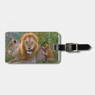 Cute Lion Cub Playing With Dad, Kenya Luggage Tag