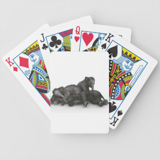 cute little baby elephants playing bicycle playing cards