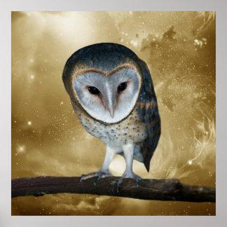 Cute little Barn Owl Posters