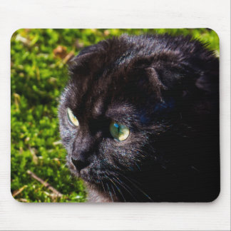 Cute Little Black Cat Mouse Pad