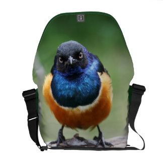 Cute Little Bluebird Photo Wildlife Photography Courier Bags