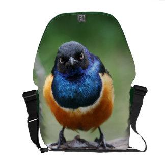Cute Little Bluebird Photo Wildlife Photography Courier Bags