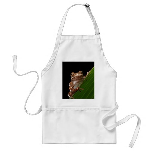 Cute Little Brown Frog Aprons
