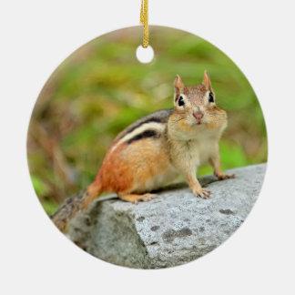 Cute Little Chipmunk Posing on a Rock Ceramic Ornament