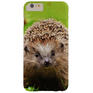 Cute Little Hedgehog in the Forest Barely There iPhone 6 Plus Case