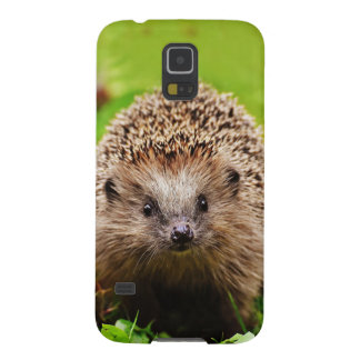 Cute Little Hedgehog in the Forest Case For Galaxy S5
