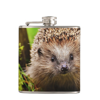 Cute Little Hedgehog in the Forest Hip Flask