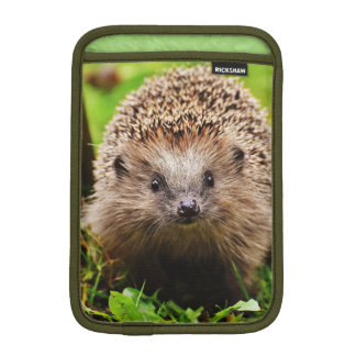 Cute Little Hedgehog in the Forest iPad Mini Sleeve