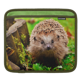 Cute Little Hedgehog in the Forest iPad Sleeve