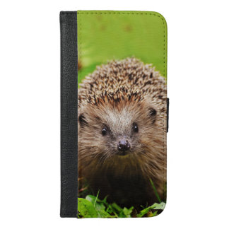 Cute Little Hedgehog in the Forest iPhone 6/6s Plus Wallet Case