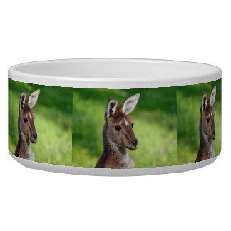 Cute Little Kangaroo Pet Water Bowls