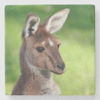 Cute Little Kangaroo Stone Coaster