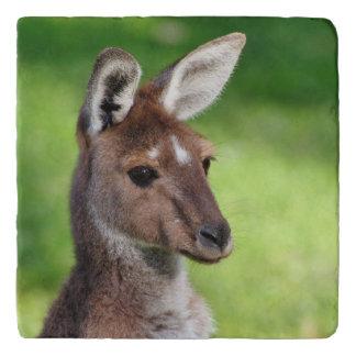 Cute Little Kangaroo Trivet