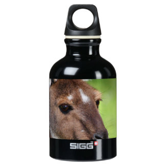 Cute Little Kangaroo Water Bottle