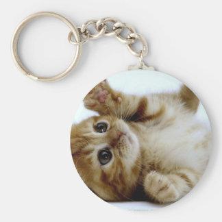 cute little kitten cat pet ginger tabby basic round button key ring