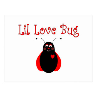 Cute Little Love Bug Ladybug Postcard