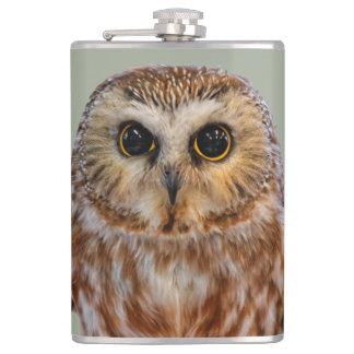 Cute Little Northern Saw Whet Owl Flasks