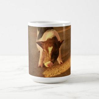 Cute Little Pig Coffee Mugs