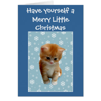 Cute little red kitten wishes Merry Christmas Card