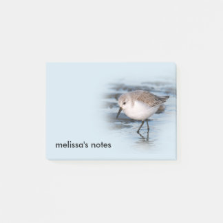 Cute Little Sanderling at the Beach Post-it Notes