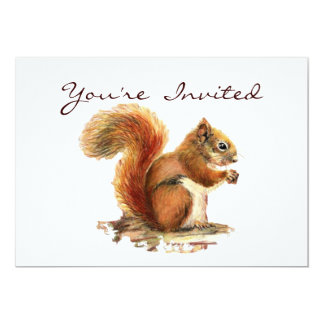 Cute Little Squirrel Animal Birthday Invitation