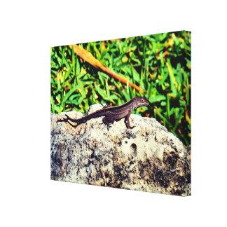 Cute Lizard Canvas Print