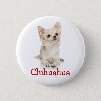 Cute Long Haired Chihuahua Button Pin
