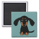 Cute Long Haired Dachshund Puppy Refrigerator Magnets