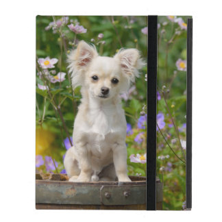 Cute longhair cream Chihuahua Dog Puppy Pet Photo- Covers For iPad