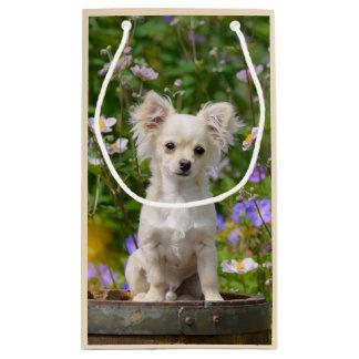 Cute longhair cream Chihuahua Dog Puppy Pet Photo Small Gift Bag