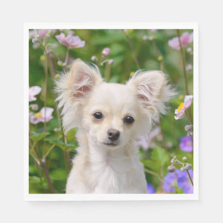 Cute longhair cream Chihuahua Dog Puppy Photo on - Disposable Serviette