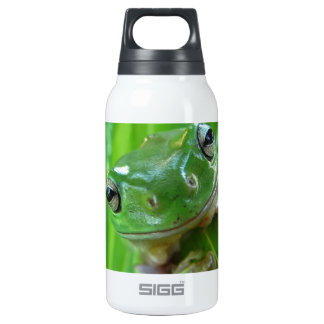 Cute Looking Tree Frog Close Up 0.3 Litre Insulated SIGG Thermos Water Bottle