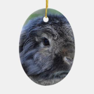 Cute lop eared rabbit ornaments